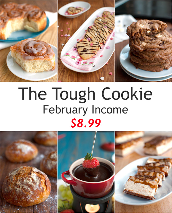 Food Blog Income Report February 2014