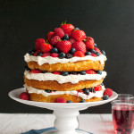 Forest Fruit Cake with Whipped Cream Frosting