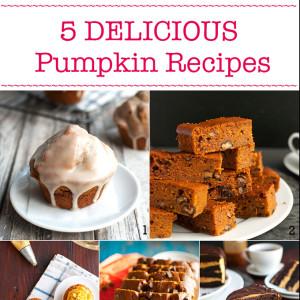 Five Delicious Pumpkin Recipes - my best pumpkin recipes. Perfect fall baking! | thetoughcookie.com