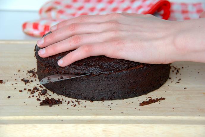 Chocolate Bat Cake
