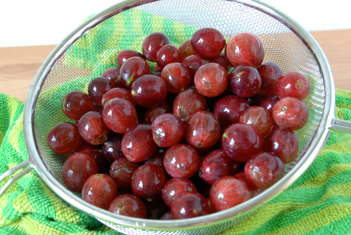 Gooseberry Sorbet
