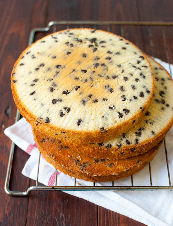 How to Make Chocolate Chip Cake Layers - these chocolate chip cake layers are thick, fluffy and DELICIOUS! Perfect with simple, homemade chocolate or vanilla frosting | thetoughcookie.com